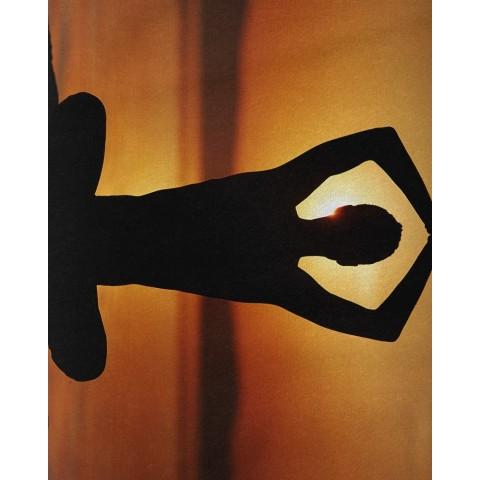 Le softshelI- Victoria Blue
